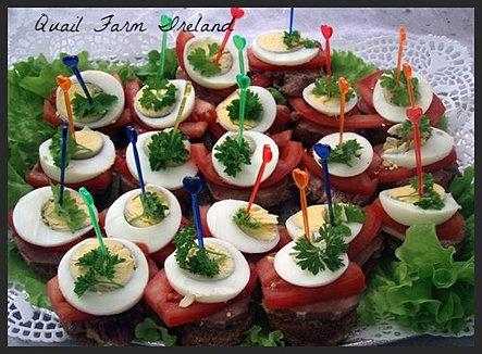 Quail farm ireland cooking guide for quail eggs for Quail egg canape