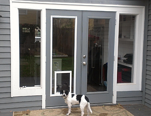 Pet doors already in the door glass inserts love your pet for Dog door window insert