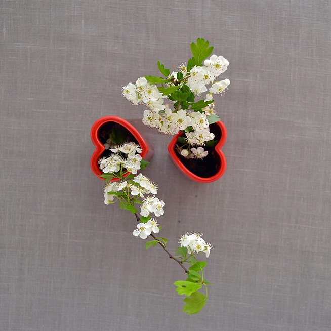 Product Page For Small Red Heart Vases