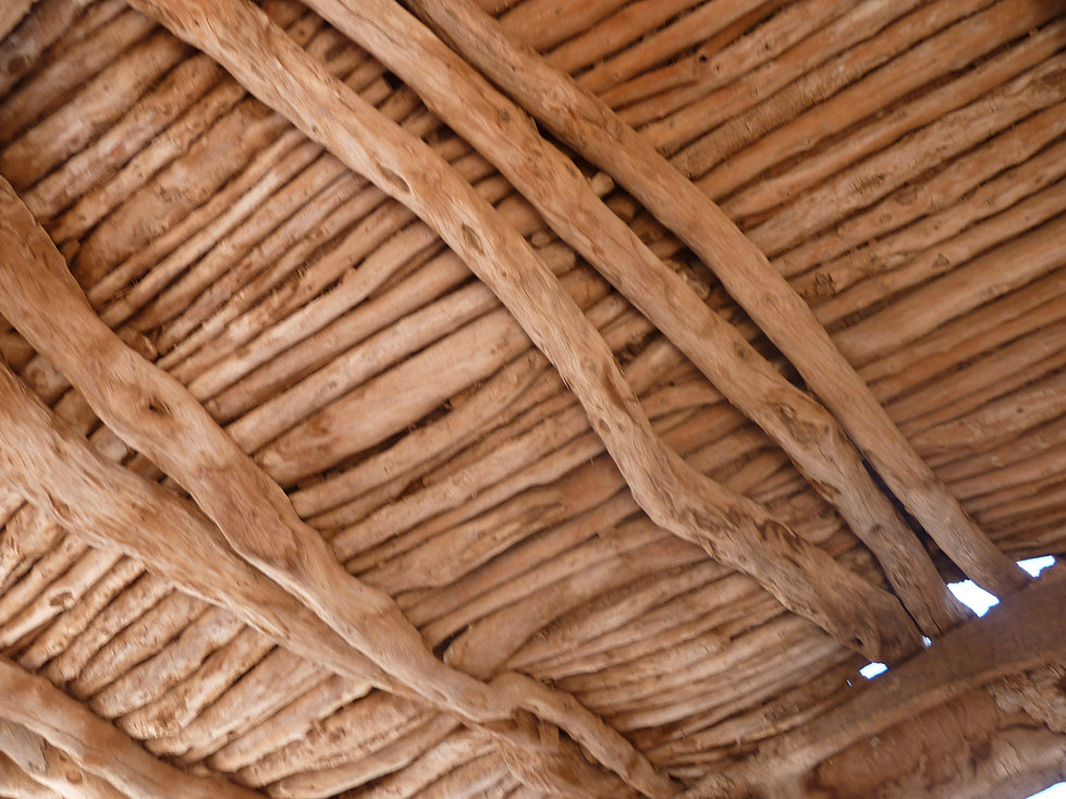 Plafond de bois d'arganier
