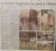 Article_midi_libre_Ferme_équestre_de_Vis