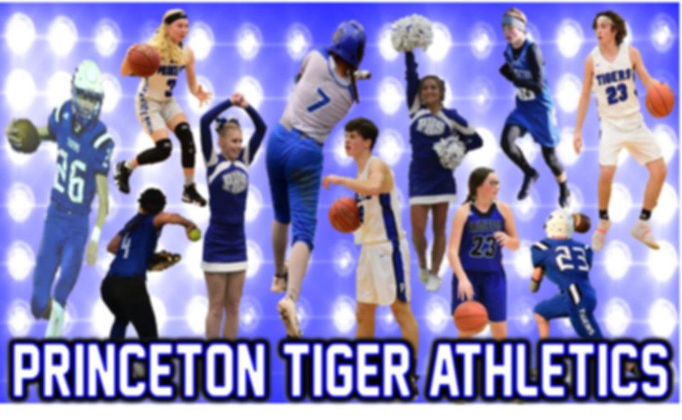 Athletics Page Banner1.jpg