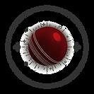 Cricket College Team