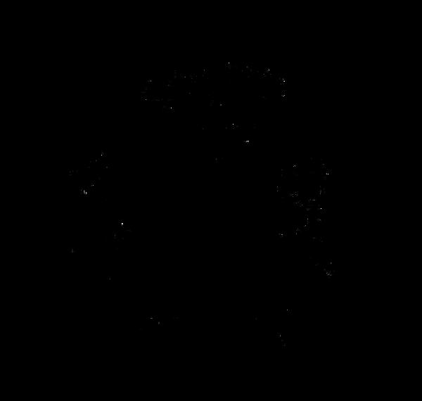 CFP Logo April.png