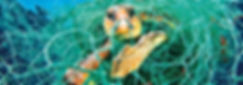 SW-041717-Ocean-Hero (1).jpg