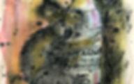 Koala_2bd.jpg