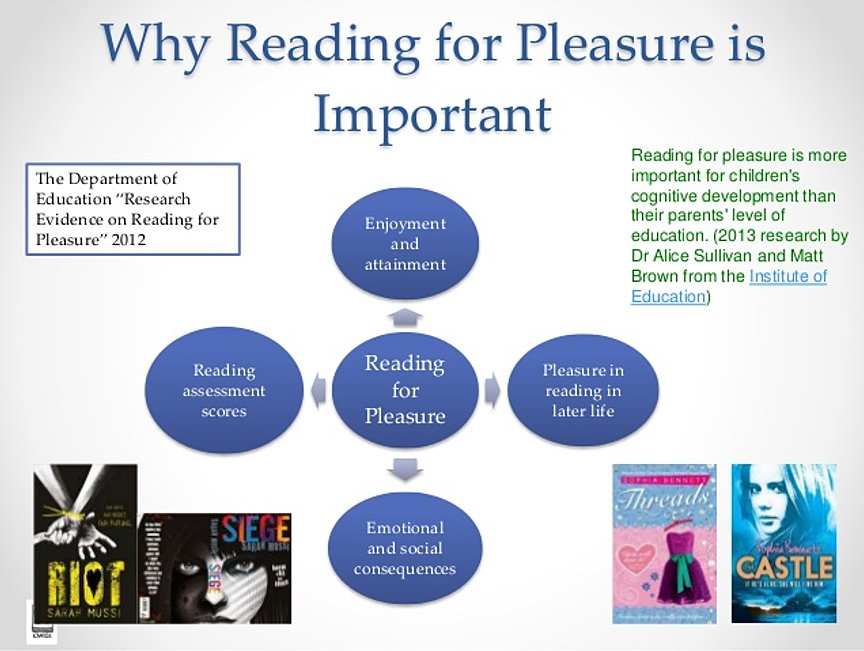Reading for Pleasure, and Why This Matters