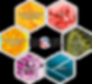 LOGO 5 SYNDICATS + INOVA DETOURES WEB.pn