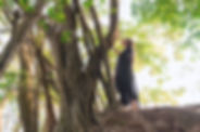 Forest Bathing Tour_Dialogue with a tree