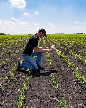 Agribusiness Vietnam