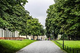 A Park in Munich