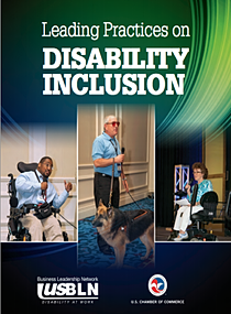 USBLN PDF on Leading Practices on Disability Inclusion