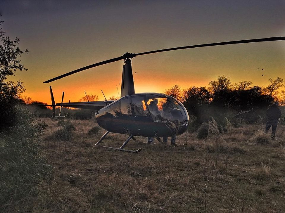 helicopter hog hunts with Helihoghunt on Hog Hunting In The Texas Hill Country in addition helicopterpighunting besides Helicopter Pig Hunting With Texas Specialty Hunts Helicopter Hog Hunting On 650000 Acres In Texas further Hunting Photos also Watch.