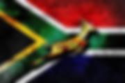 SA Flag Springboks.png