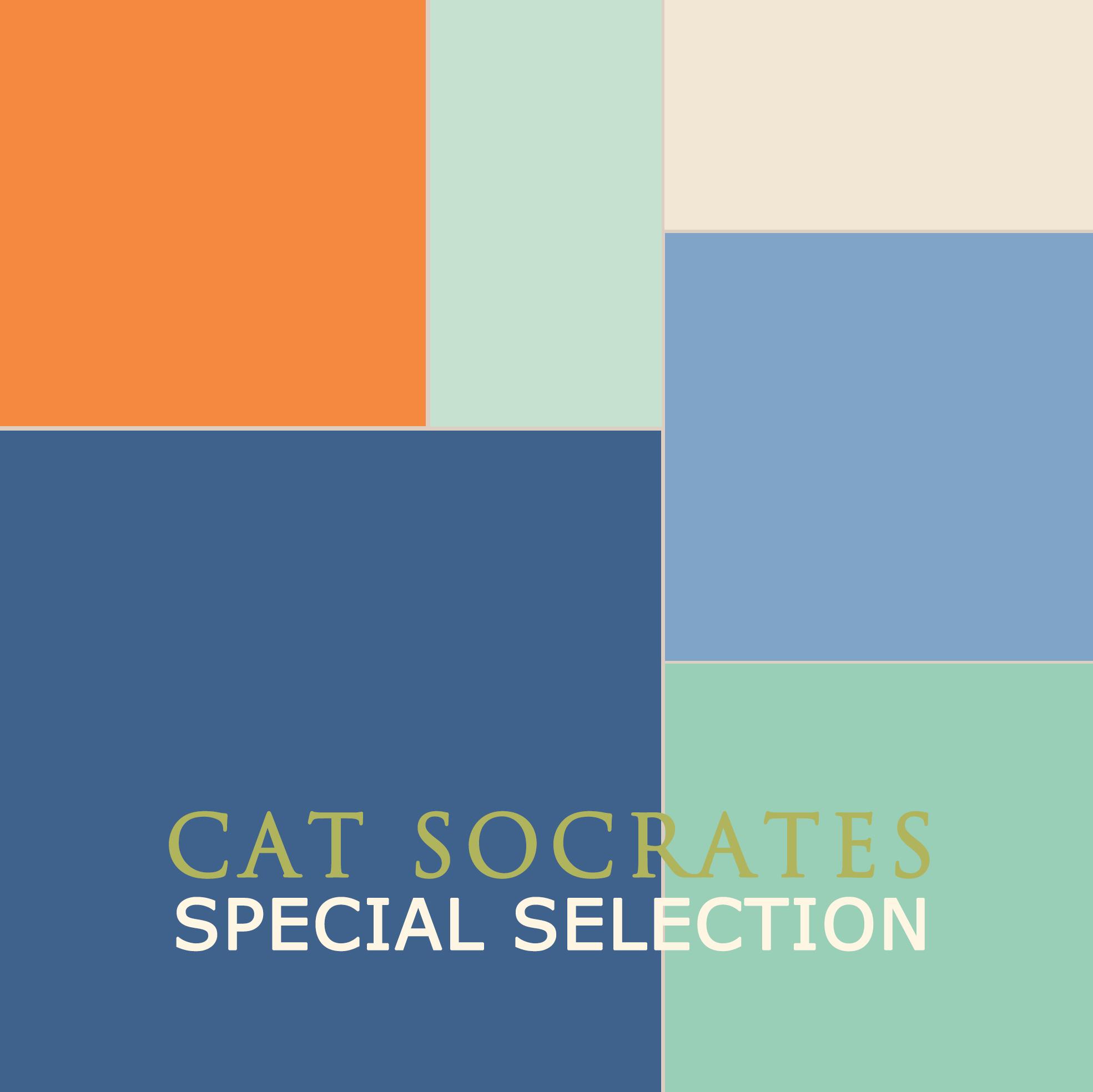 cat socrates