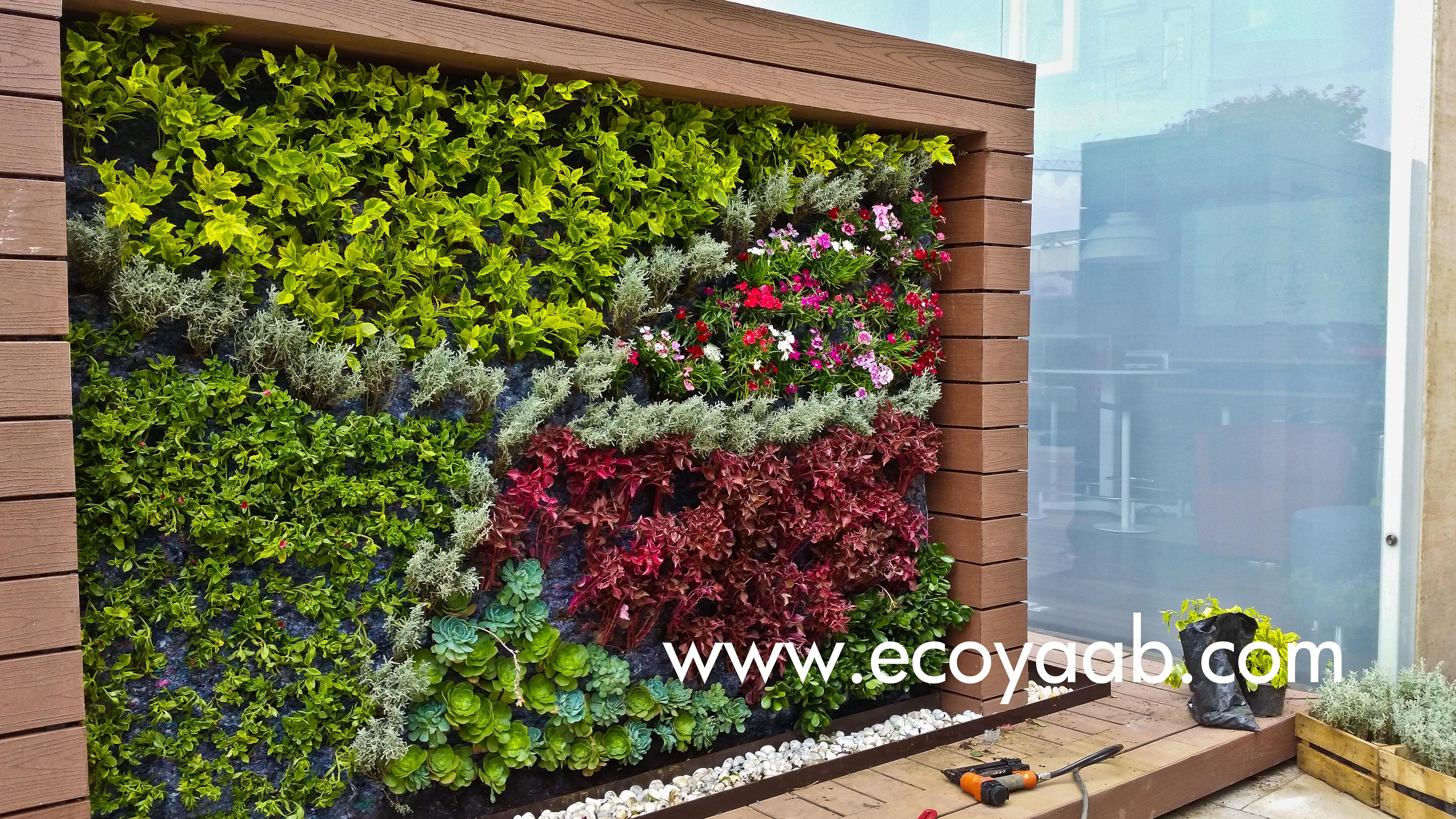 Jardin vertical muro verde nico en m xico dise os for Muros verdes arquitectura