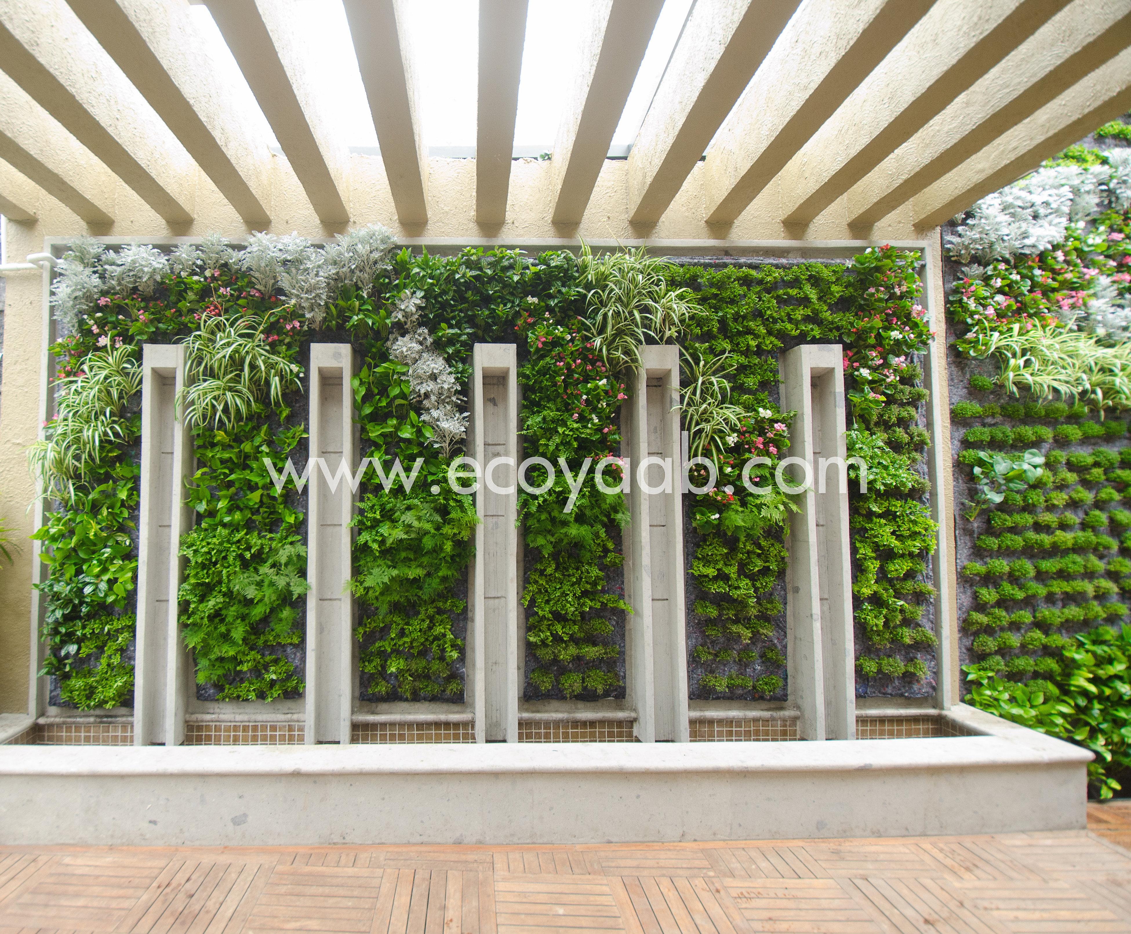Fachadas con jardines verticales for Diseno de muros verdes