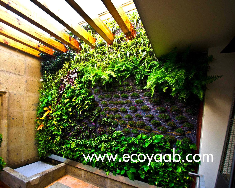 Muros verdes ciudad de m xico ecoyaab jardines verticales for Muros verdes arquitectura