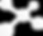 IntellectSpace logo white.png