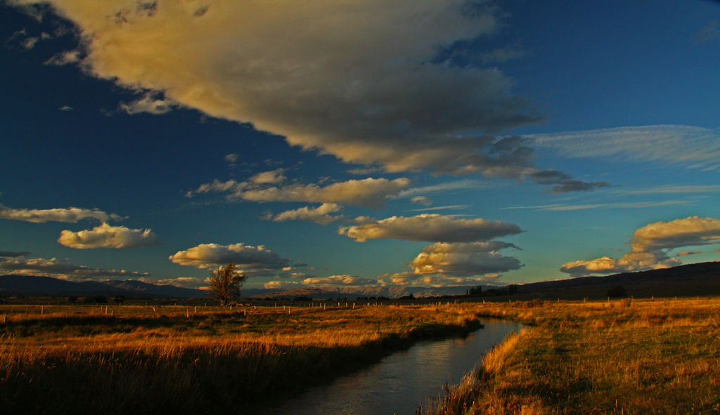Moa Creek