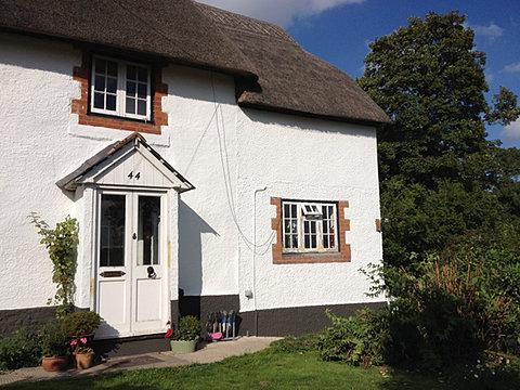 Paint Lime Cob Repair Lime Render Wiltshire