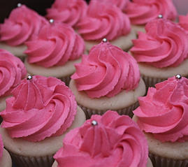 Sweet Ness Cupcakes