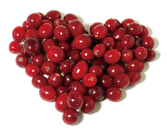 Heart shaped pile of cranberries photo.jpg