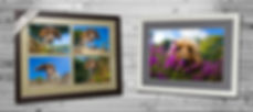 Examples of Wall Art you can buy fro Bounders Dog Photography - Photograph by Joe Riley at Bounders Dog Photography, Derbyshire