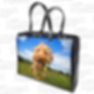 Handbag_White.png