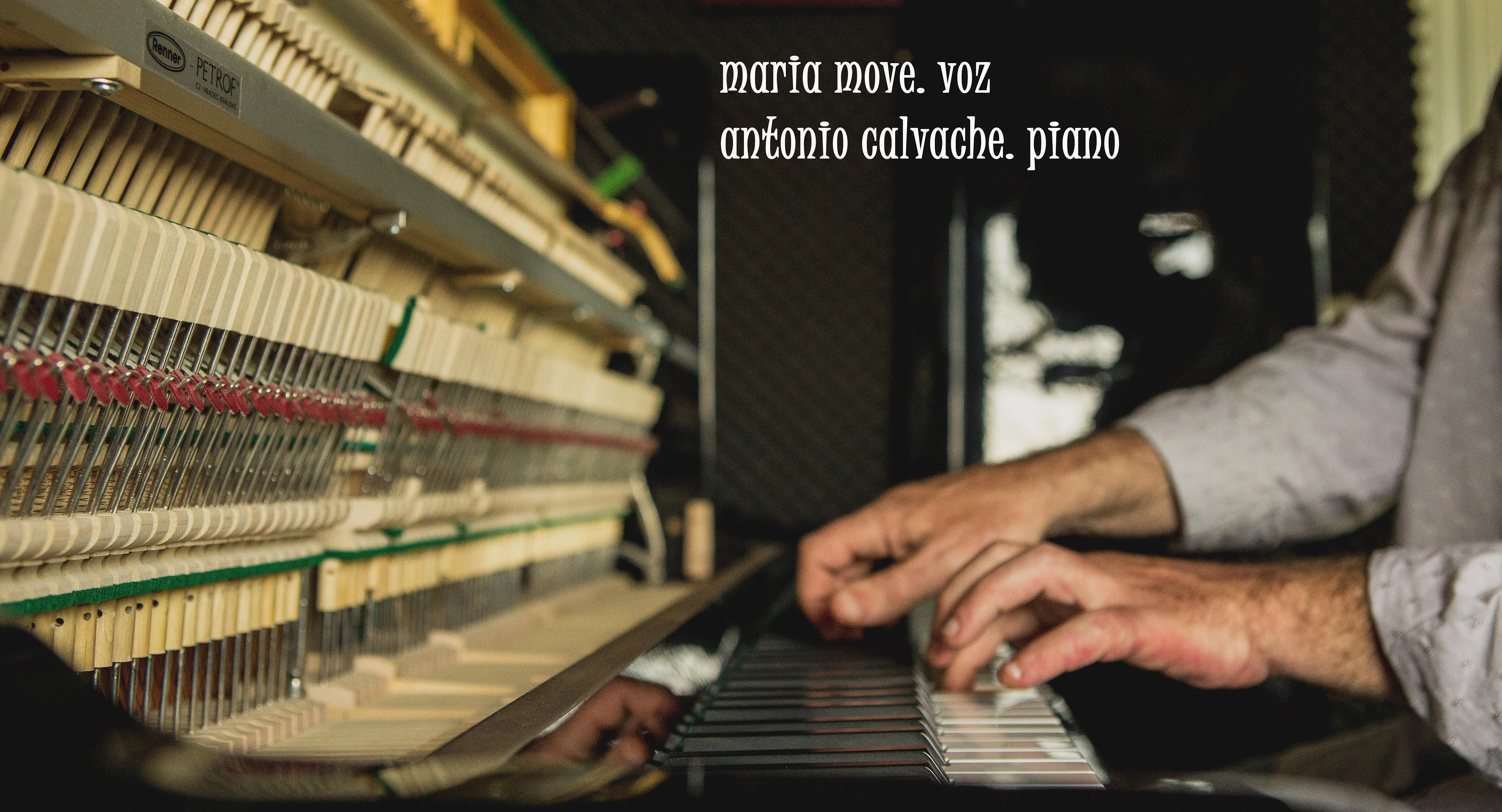 A regadeira de adela mar a move encaje de boleros for Micro piano casa compatto