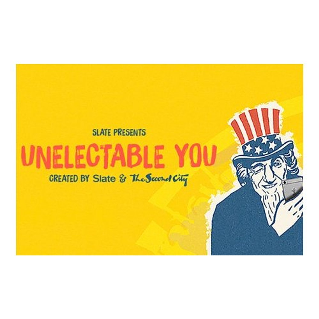 unelectable-you-05