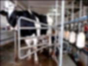dairy-industries.png