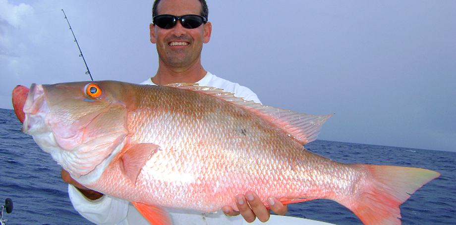 Miami fishing charter with off limits sportfishing charters for Fish store miami