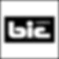 bic_carpets_logo.png