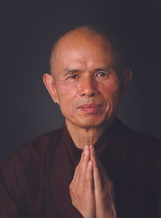 Image result for thich nhat hanh picture