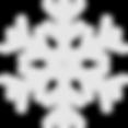 snowflake copy_edited.png