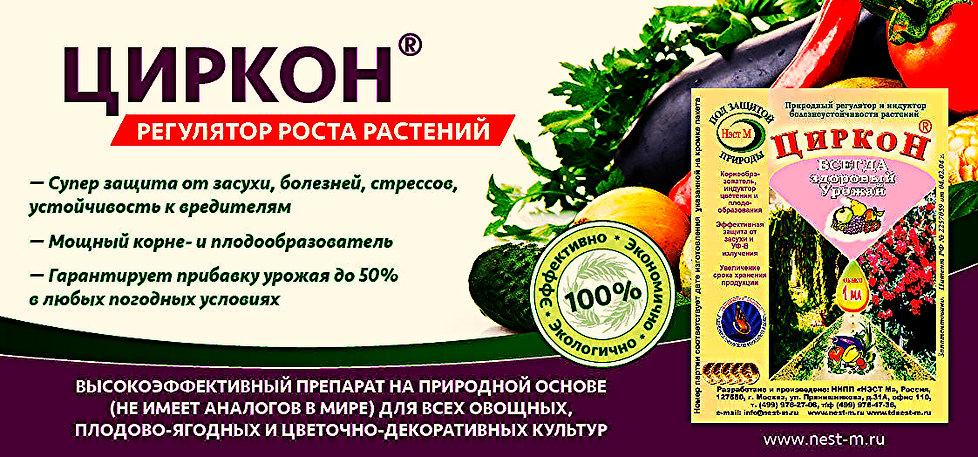 Циркон Стимулятор Роста Инструкция Цена - фото 3