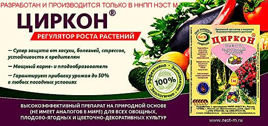 циркон инструкция по применению для томатов