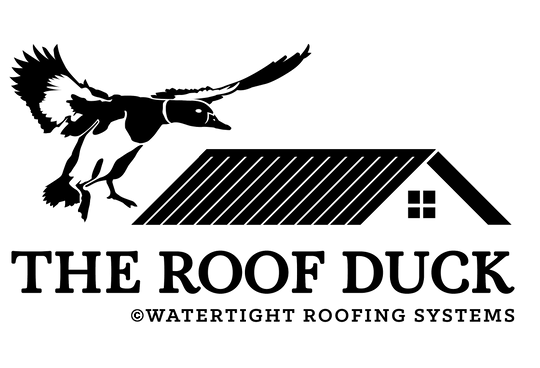 the roof duck watertight roofing systems metal roofing