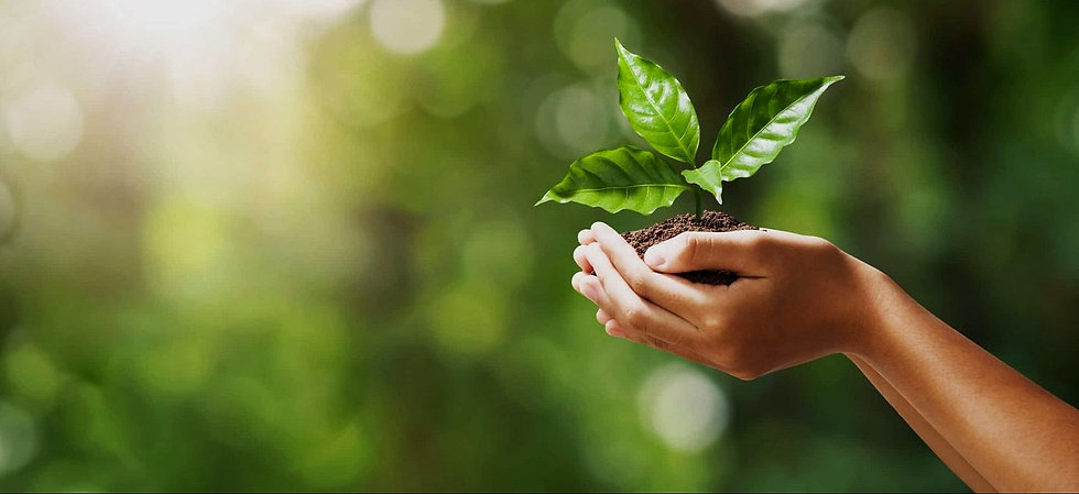 caring_for_the-environment-scaled-e1596104618586_edited.jpg