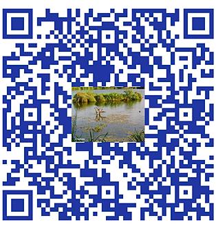 Código QR de la Web del Proyecto