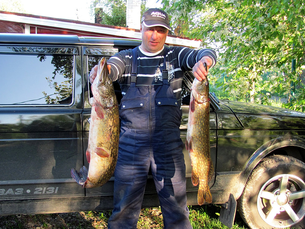 рыбалка базы петербург