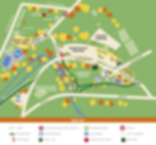 Lentil Fest Overview Map (HK Design).png