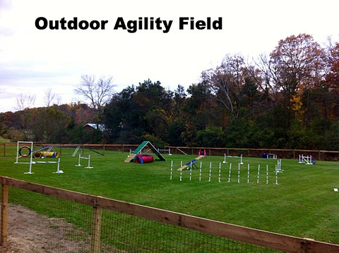 how to train agility at home
