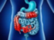 digestive-health-crohns-disease-colitis.
