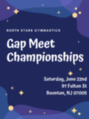 Gap meet 2019 flyer.png