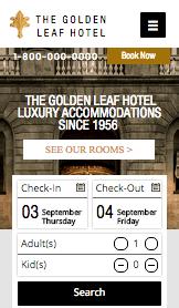 Luksusowy Hotel Miejski