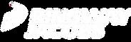 Ringway Logo White.png
