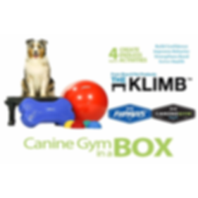 Canine Gym in a Box - Blue_01.png