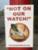 Not On Our Watch.jpg